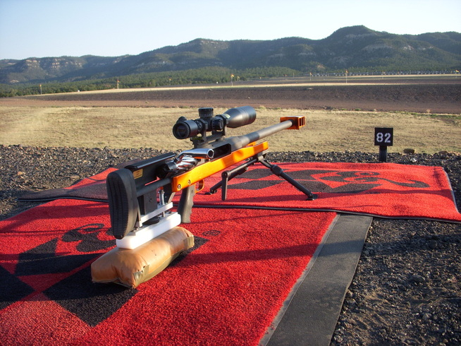 ar 50 long range shooting